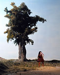 Hommage à Edward Hopper