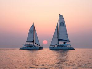 Sail Cat 55 Daemyoung Rosemarine