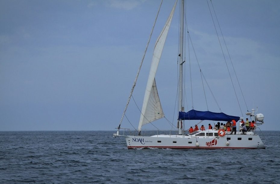 Sailing yachts G50 in Jeju Island