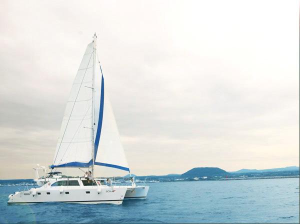 Sail catamaran52