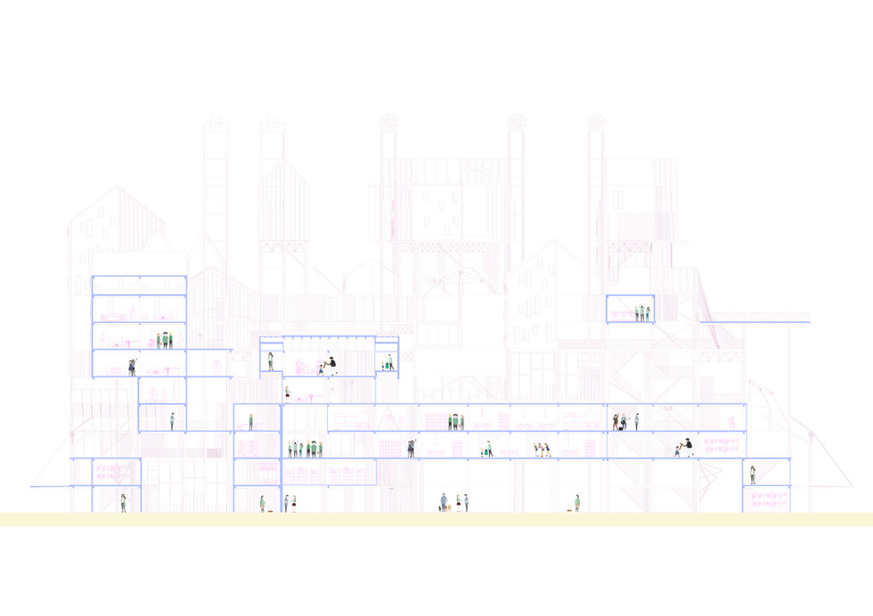 Longitudual Section