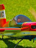 Raven Ready for Take off vivid.jpg