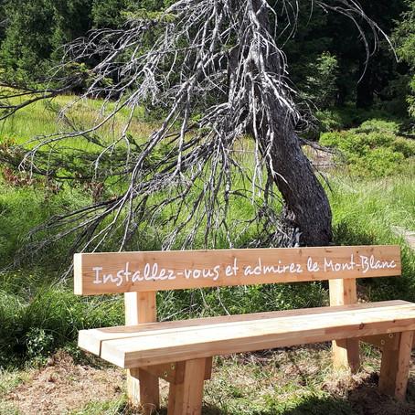 Formidable randonnée : sentier des Arpelières sur la faune des tourbières