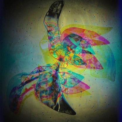 "igitalArtInterpretation of my Mixed Media Artwork ""...WhenDovesCry...""   Artwork © Barbara Schedl"