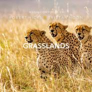 Grasslands by Robert Hicks & Tristan Noon