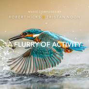 A Flurry Of Activity by Robert Hicks & Tristan Noon