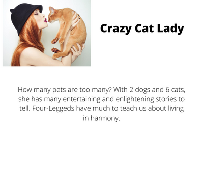 Crazy Cat Lady story.png