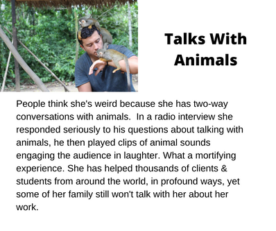 Talks With Animals.png