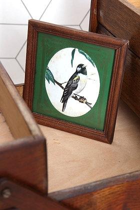 Cadre oiseau