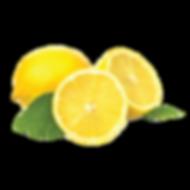 Lemon_edited.png