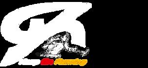 Logo_negativ_HP.png