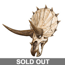 The Triceratops