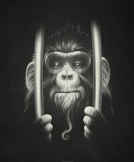 Monkey Behind Bars Drawing