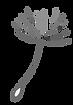 dandelion1.png