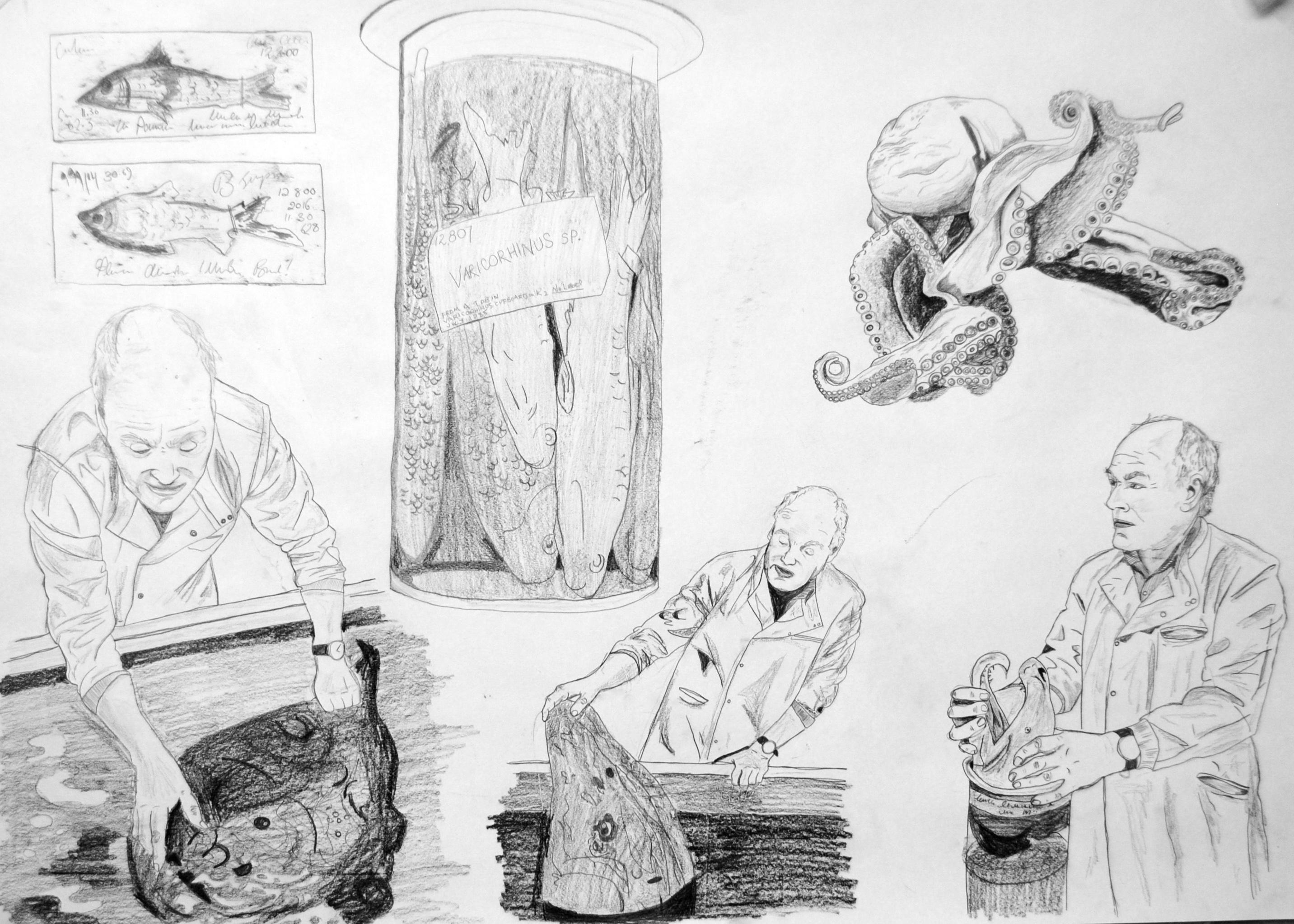 Oliver Crimmen Fishman series (prep stud