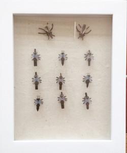 Flies, 2016