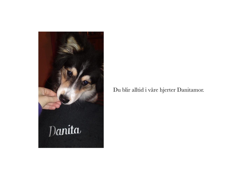 Danitamor