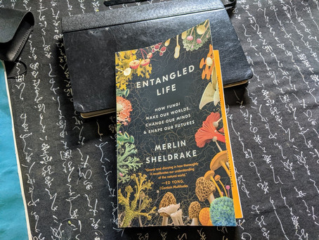 Wonderful life changing book about the fungus among us.
