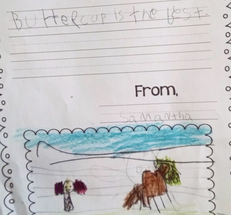 Samantha's Letter