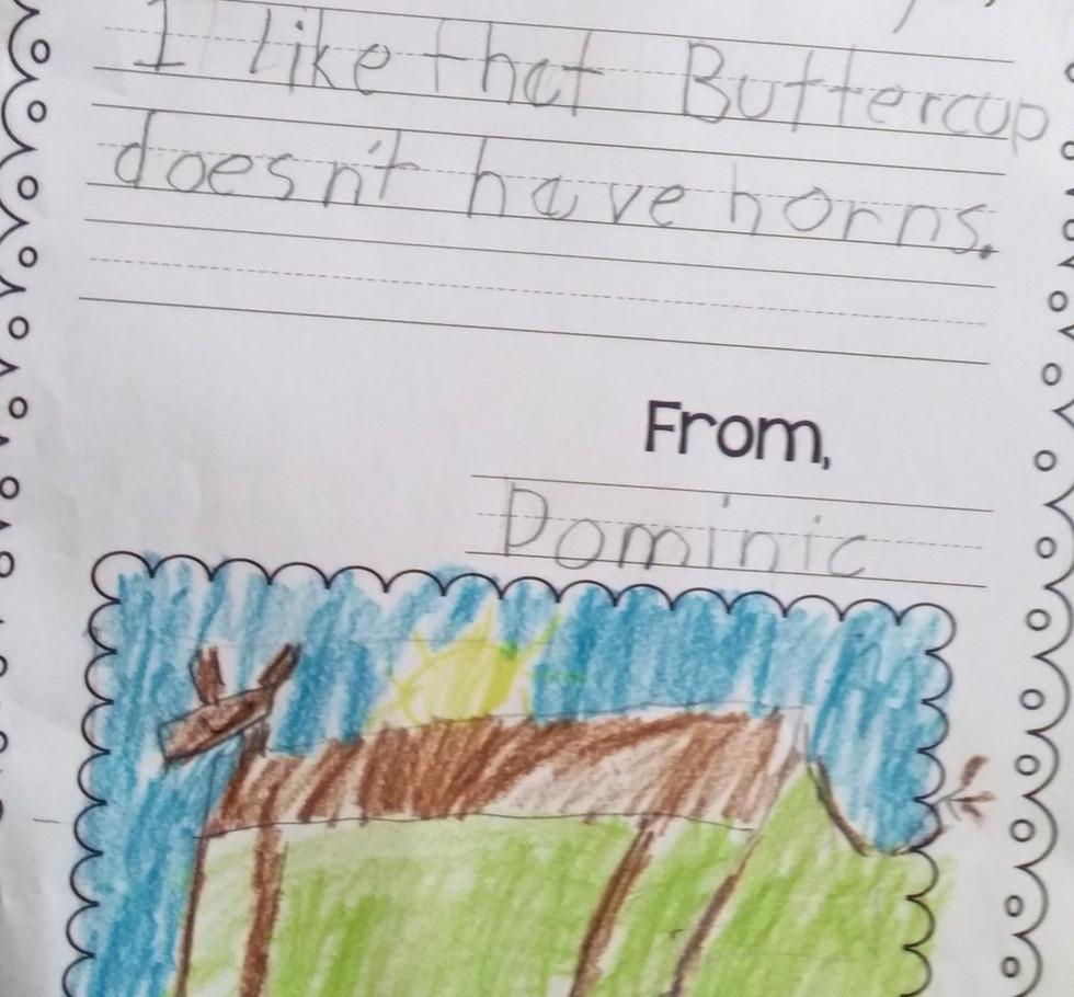 Dominic's Letter