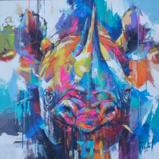 Rhino 56 - Protection