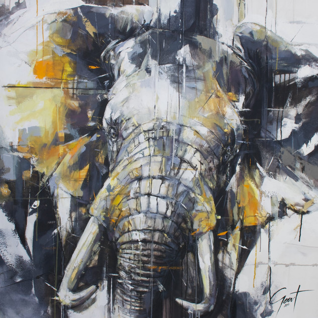 Elephant 19 - (Big 5 Collection)