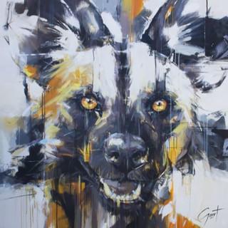 Wilddog 11 - Focuse