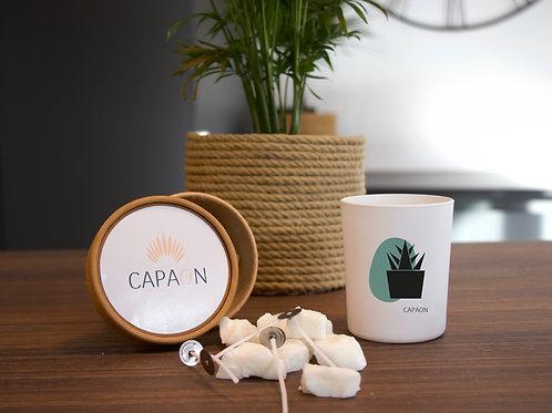 Box Capaon - Le cactus