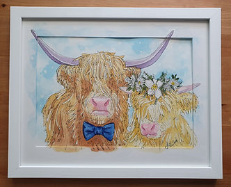 watercolour highland cows