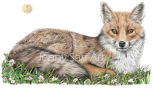 2018 - fox - Art4site.jpg