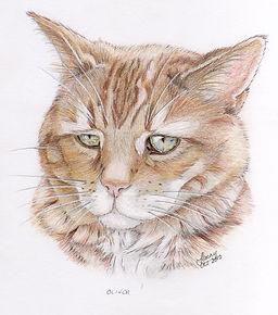 Commission Artwork, Jenny Sari Art
