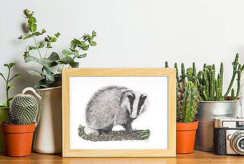 Badger Limited Edition A4 Print