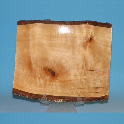 Natural Edge Maple Plate Item 501