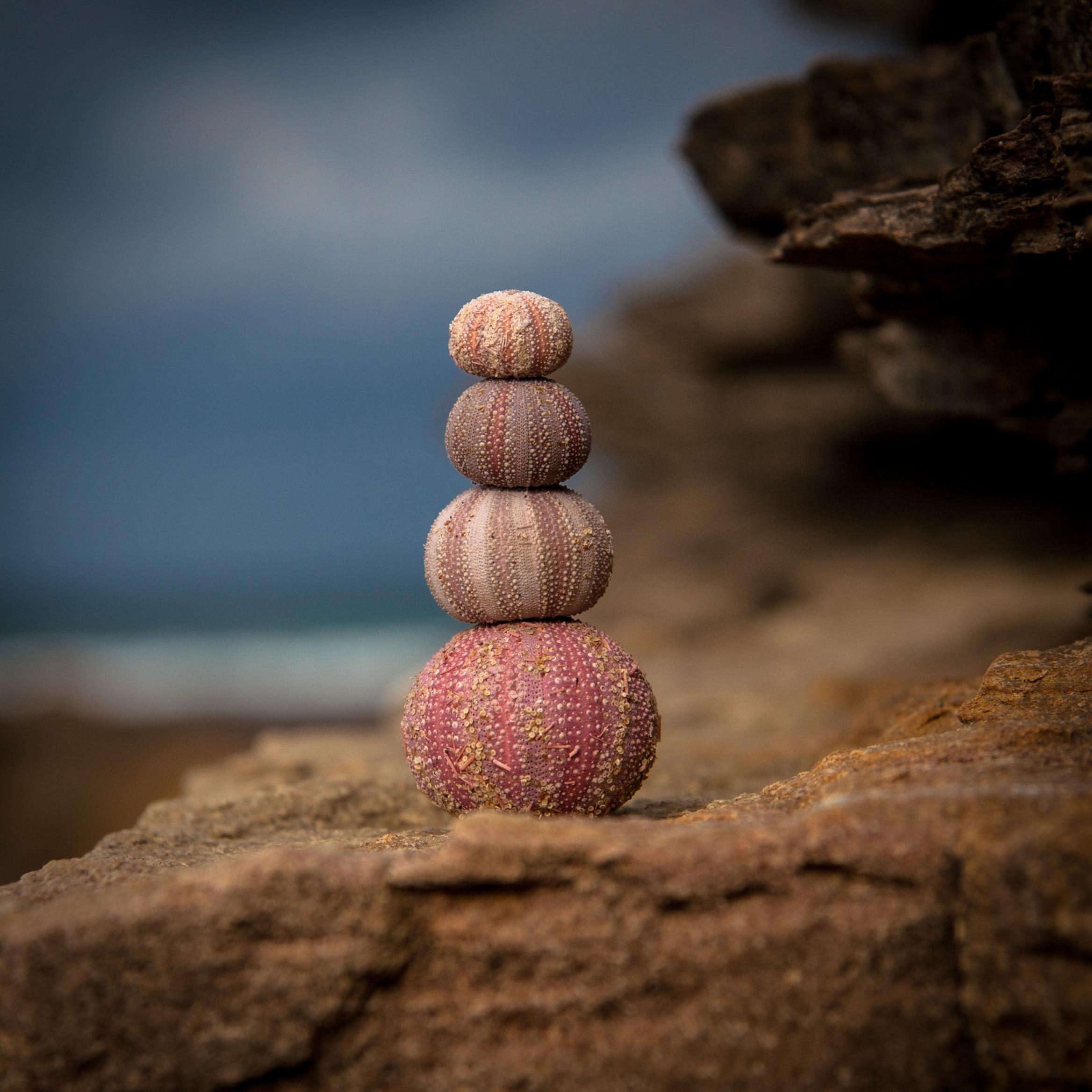Yuan Qigong Mindfulness Course: Tuesday