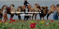 Screenshot_2021-02-27 Фестиваль тюльпано