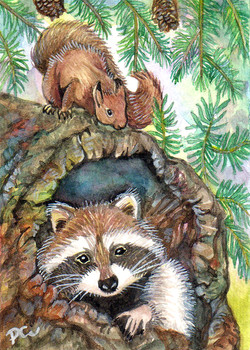 Racoon In The Tree Hole W/ Squirrel