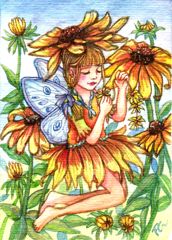 Black-eyed Susan Fairy