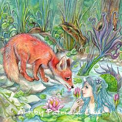 Mermaid And Fox