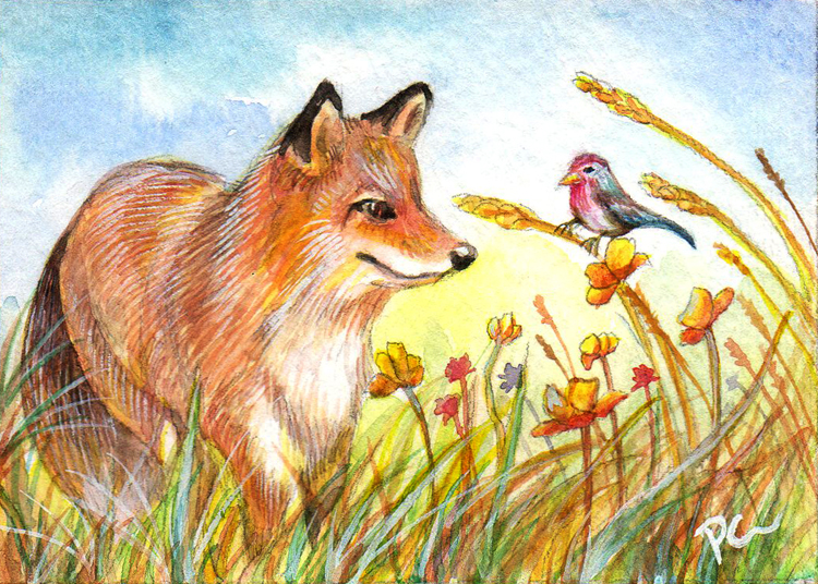 Fox And Bird In The Field