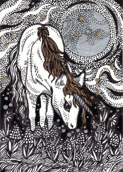 Unicorn Under The Moon