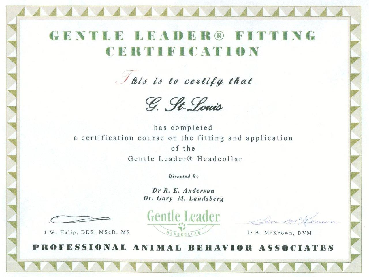 Gentle Leader.jpg