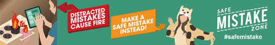 Safe Mistakes 2015 email banner