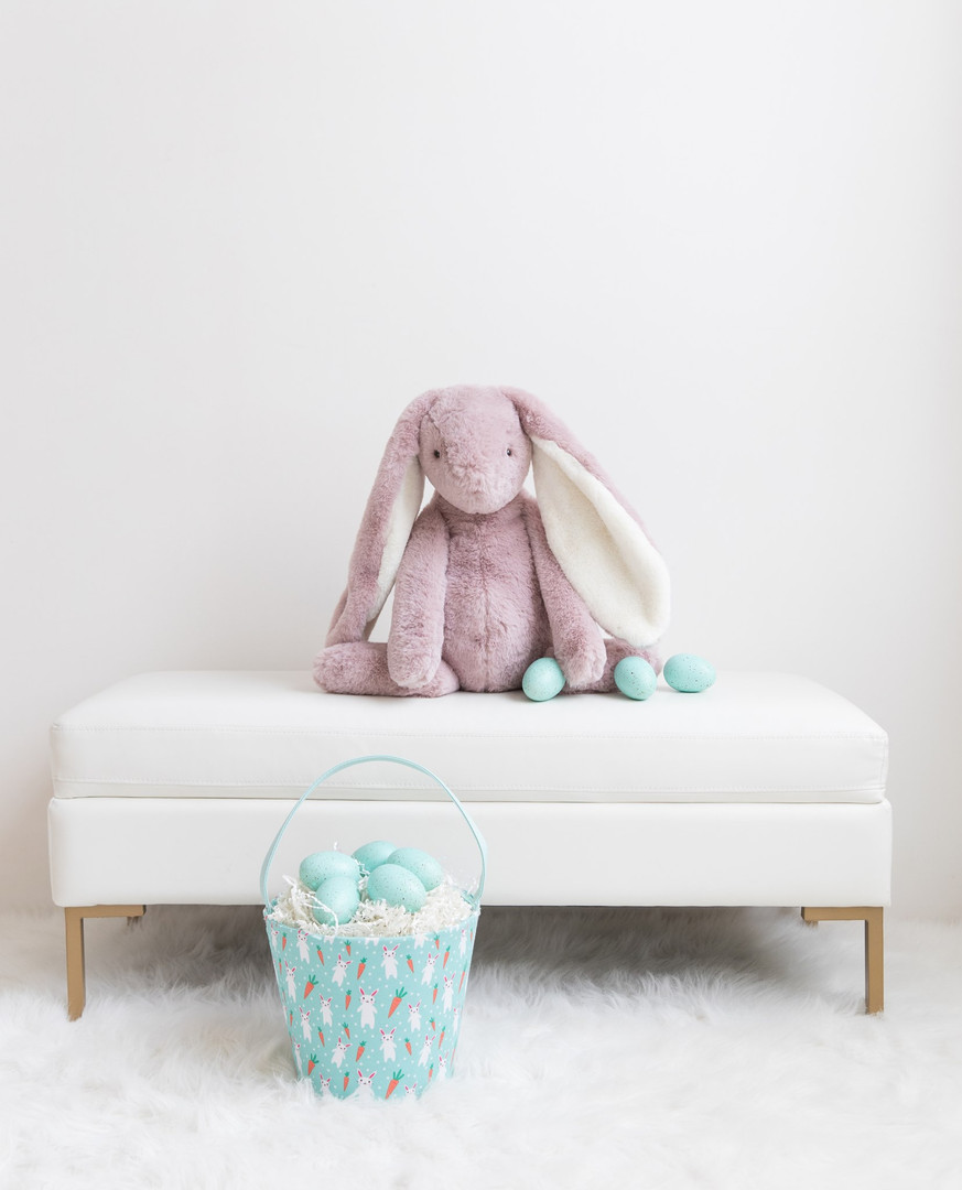 Beau The Very Large Bunny.jpg