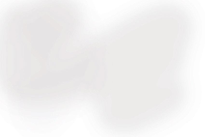 fongo gris 2.jpg