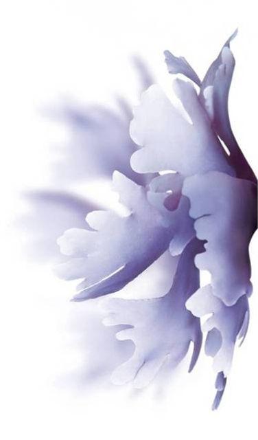 Blanc Seaweed.jpg