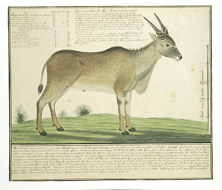 Mammals_A2014