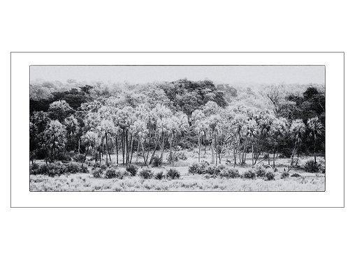EOK_Landscapes_e01