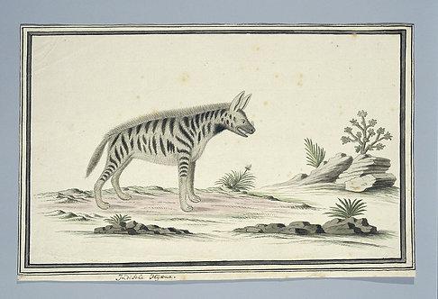 Mammals_A2008