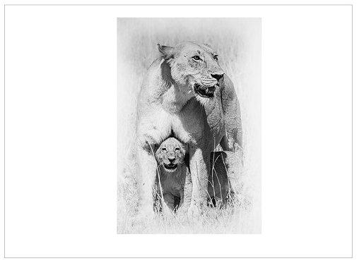 EOK_Wildlife_MM045