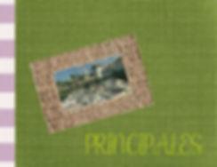 11 Principales portada.jpg